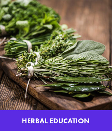 categories-herbal-education